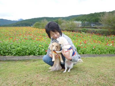 dogandflower